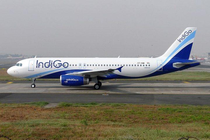 Indigo – the regional success story